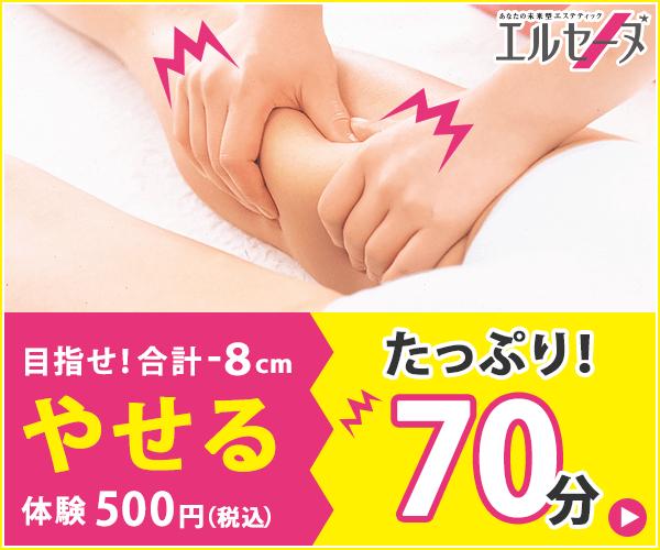 『エルセーヌ 「☆-8cmやせる体験」』